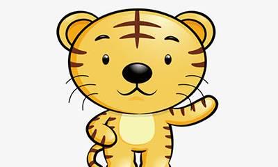生肖分析之属虎人的闪光点,生肖为虎的人性格活泼,胆大,喜欢冒险-风水八字同城网