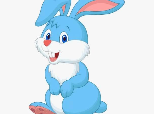 属兔人2020年农历五月的运势-生肖兔-卯兔-风水八字同城网