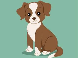 几点出生的属狗人会一生富贵?-生肖狗-戌狗-风水八字同城网