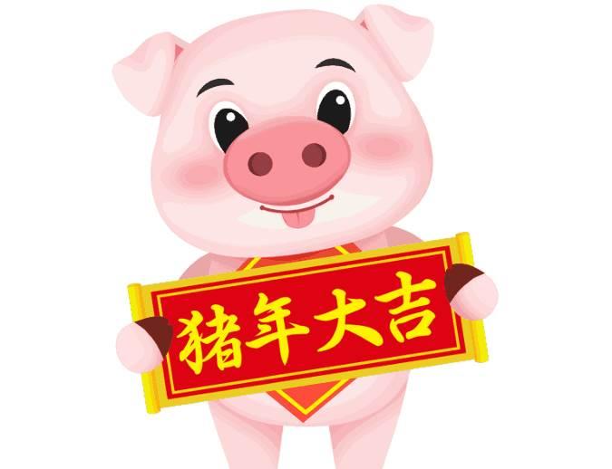 2020年农历五月属猪人的运势-生肖猪-亥猪-风水八字同城网