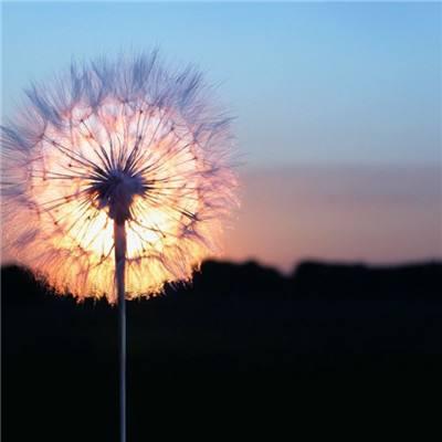 家中的灯烛对我们的运势都有哪些影响?(在和爱人相处的时候,点几盏烛火是能够拉近彼此距离的,而且还能增强感情的氛围)-风水八字同城网