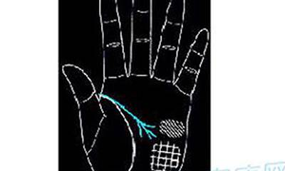 """手相面相-手指弯曲的好坏分析 """"手如柔荑,指如葱根""""-风水八字同城网"""