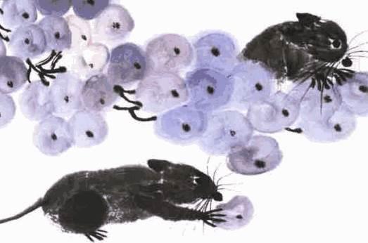 老鼠是怎么排进十二生肖的? 生肖鼠的传说-生肖鼠-风水八字同