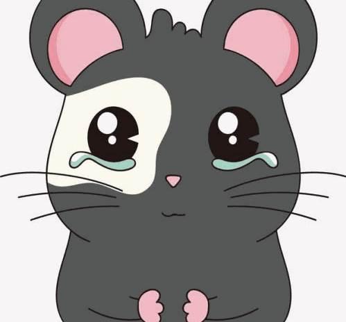 属鼠人2020年农历七月的运势-生肖鼠-子鼠-风水八字同城网