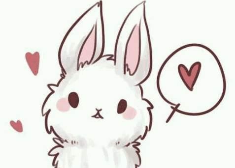 出生在什么时辰的生肖兔命会比较苦?-生肖兔-风水八字同城网