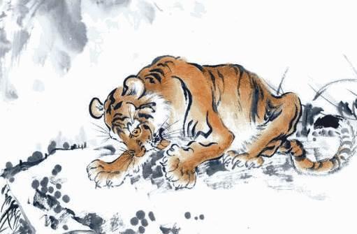 老虎是怎么排进十二生肖的? 生肖虎的传说-生肖虎-风水八字同城网