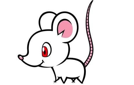 2020年农历十二月的鼠宝宝的命运-生肖鼠-子鼠-风水八字同