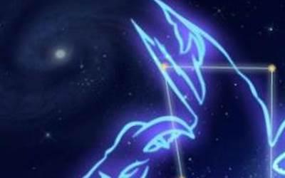 2019年摩羯座8月星座运势预测!-星座运势-风水八字同城网