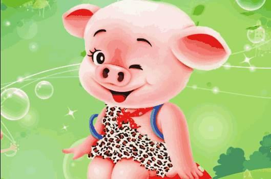 2020年农历六月属猪人的运势-生肖猪-亥猪-风水八字同城网