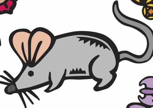 生肖鼠2020年的感情运势怎么样?84年属鼠人会离婚吗?-生