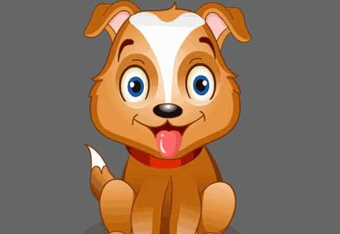 生肖狗适合居住在几楼?几楼对生肖狗运势有利?-生肖狗-风水八