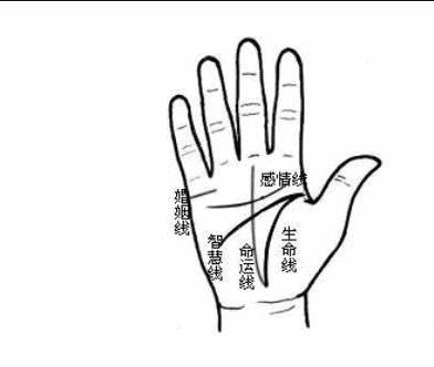 怎么看手掌纹的5条重要线?都有那些寓意?-风水八字同城网