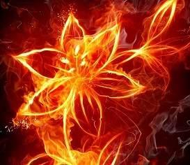 五行属火之人应当如何改善自个儿的运势?-八字算命-风水八字同城网