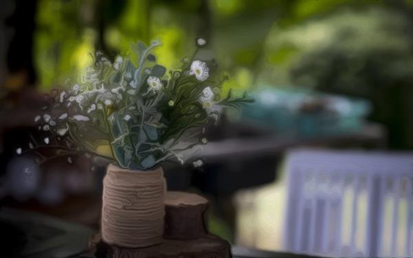 会导致家中阴气加重,不能在室内养的花(那些大型的观叶植物,其植株形状过大,所以难免自身的阴气就会特别重)-风水八字同城网