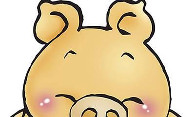 2019年哪个月出生的猪宝宝最好?快来给你家的猪宝宝看看吧-风水八字同城网