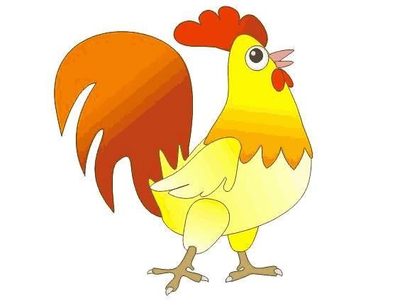 什么时辰出生的属鸡人运势会比较好呢?(上)-生肖鸡-风水八字