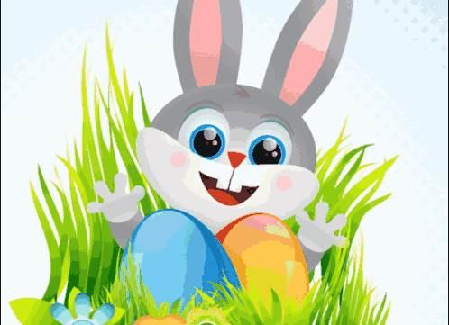 属兔人2020年农历十二月的运势-生肖兔-卯兔-风水八字同城