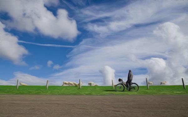 生肖牛:生肖牛在2021年全年的运气-风水八字同城网